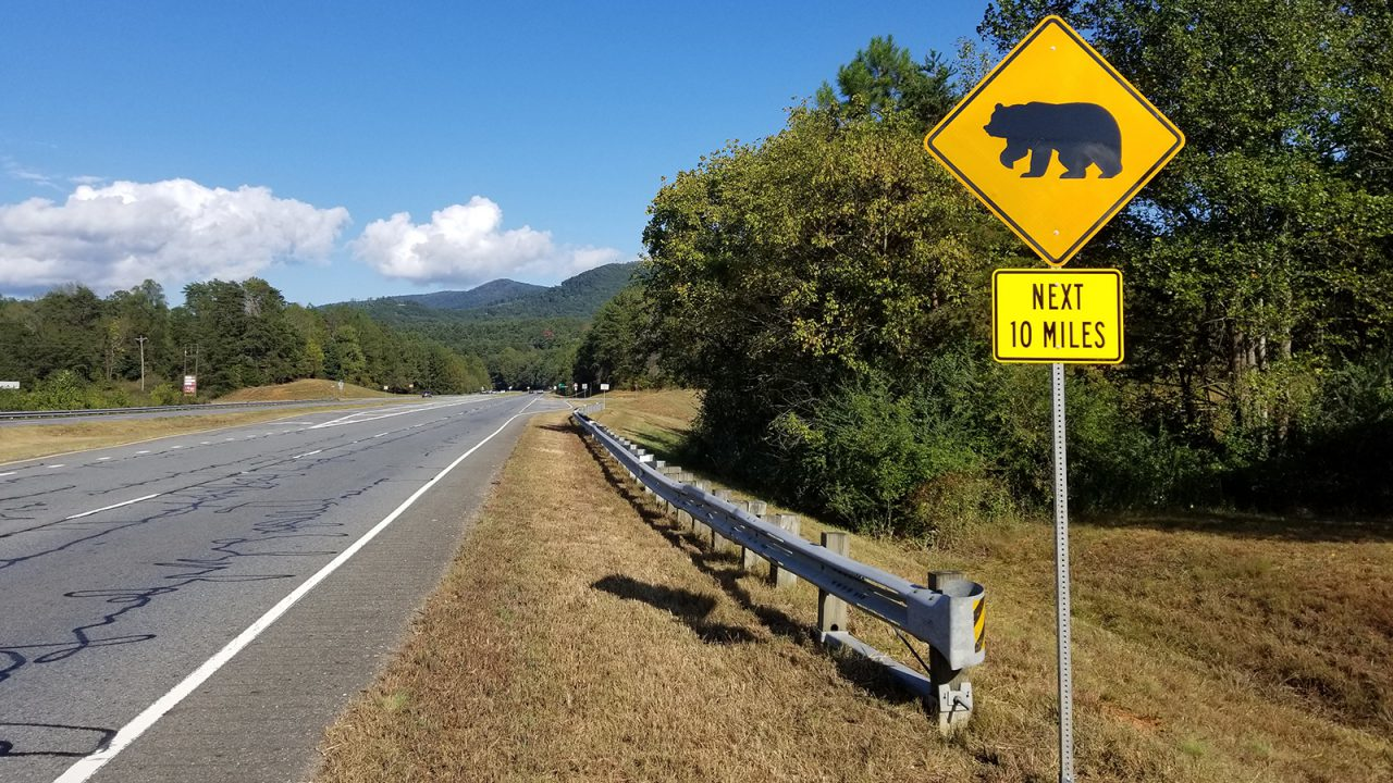 N. Georgia Black Bear Sign Project