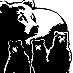 Logo of The Black Bear Project