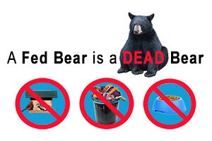 A Fed Bear is a Dead Bear-No Garbage, No Pet Food and No Bird feeders